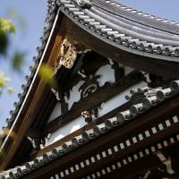 法道寺 金堂03 南大阪の景色